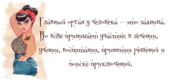 1373854944_frazki-8