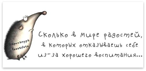 1373854969_frazki-18