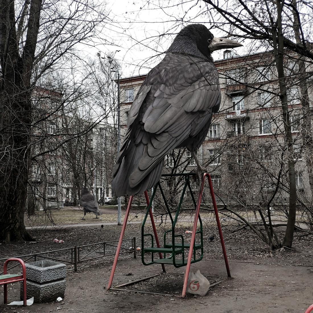 Solovyov-6-550x550@2x.jpg