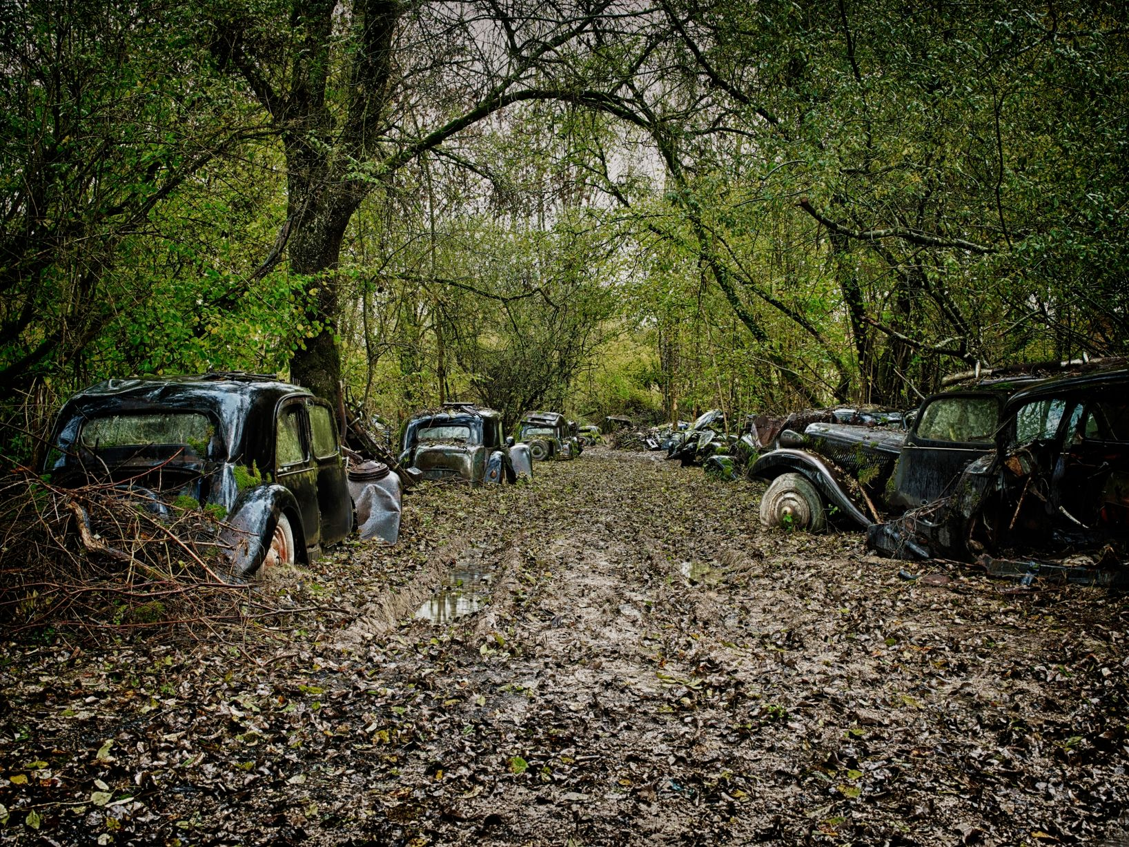 car-graveyards (1).jpg