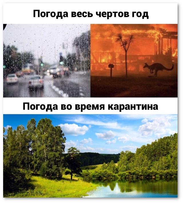2020-04-06-1586190266.jpg