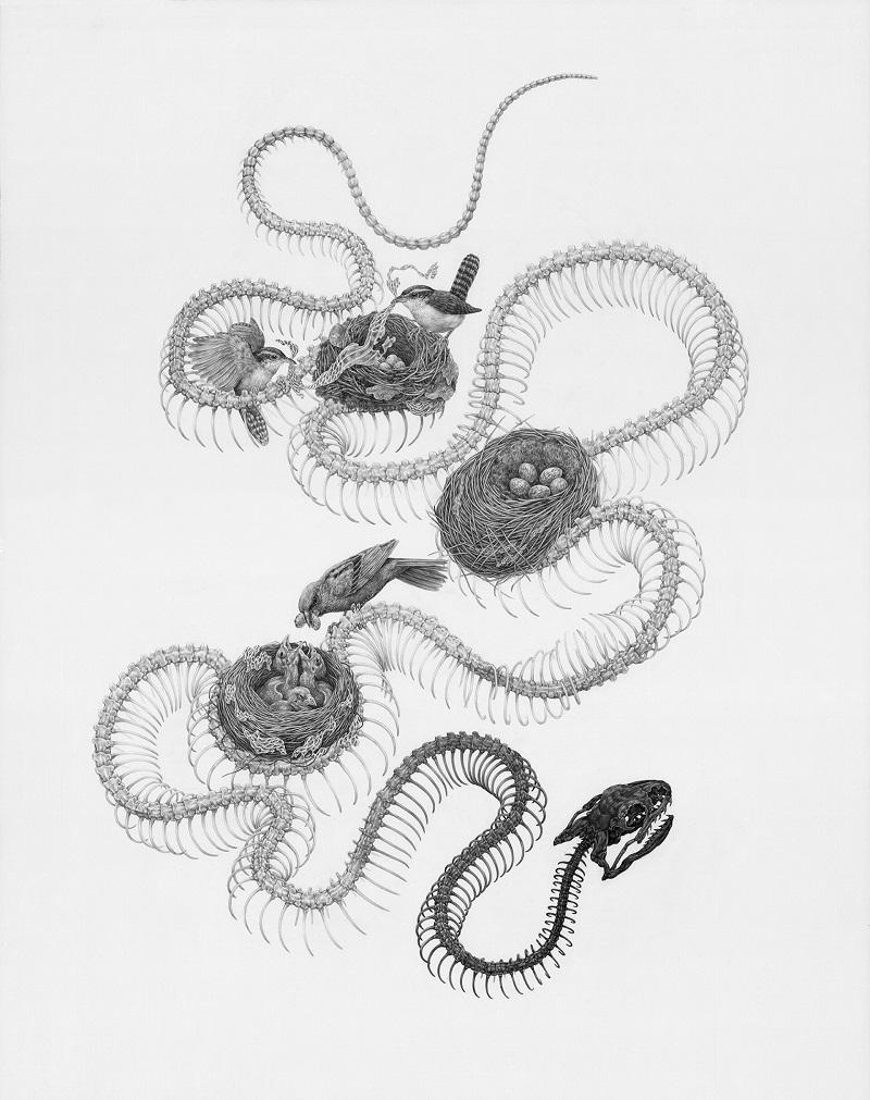 Рисунки Зои Келлер   (2).jpg