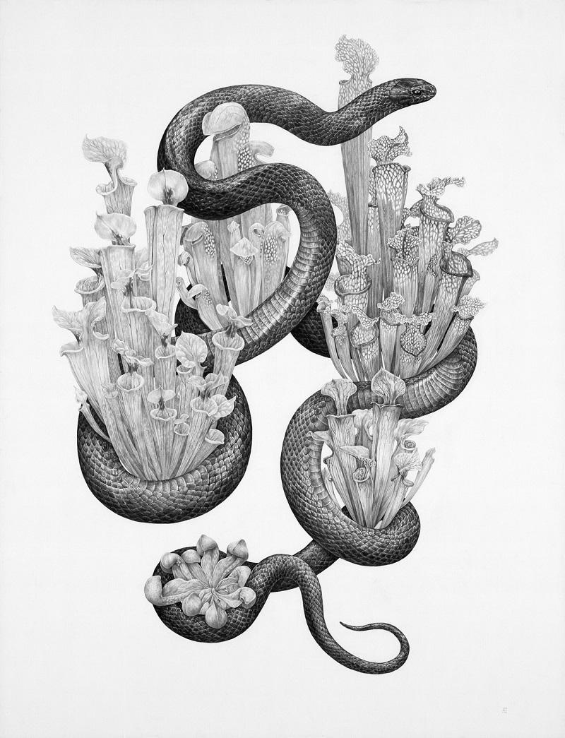 Рисунки Зои Келлер   (5).jpg