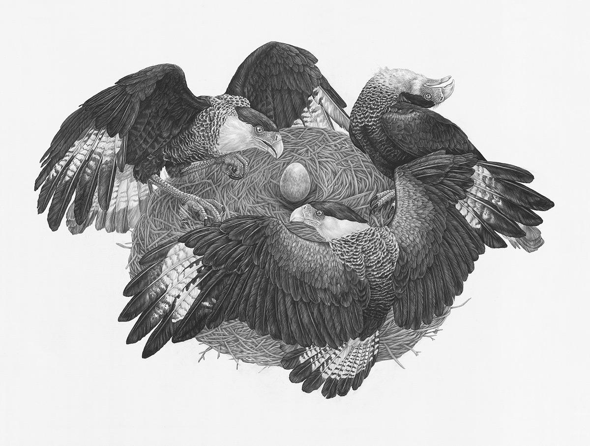 Рисунки Зои Келлер   (9).jpg