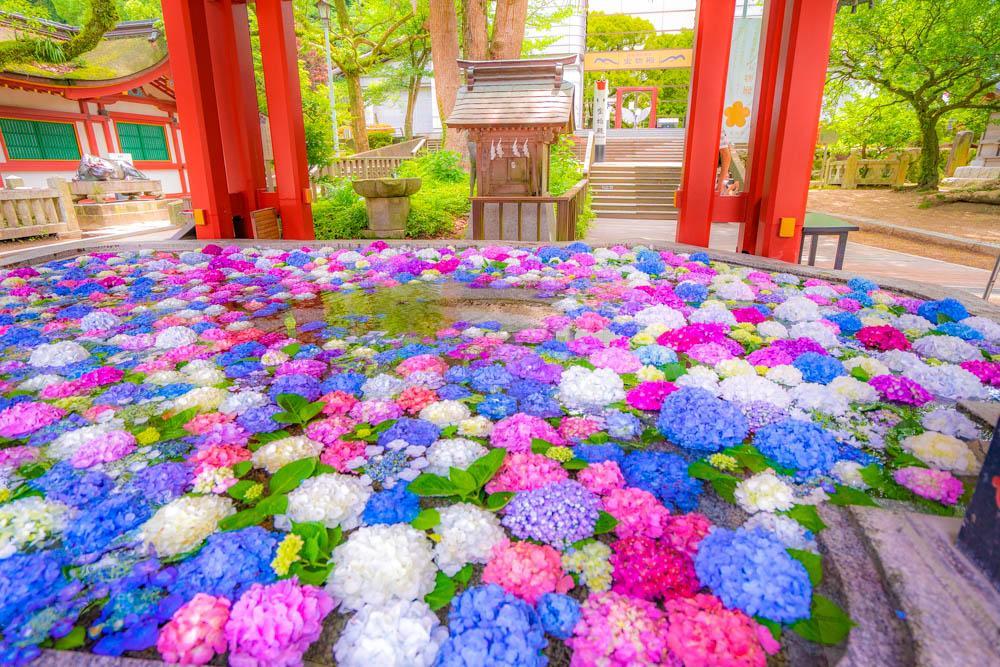 Фотограф из Фукуоки Масаси (8).jpg