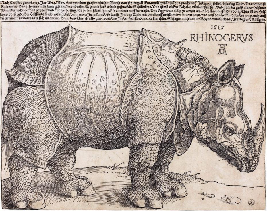 The_Rhinoceros_NGA_1964.8.697_enhanced-930x734.png