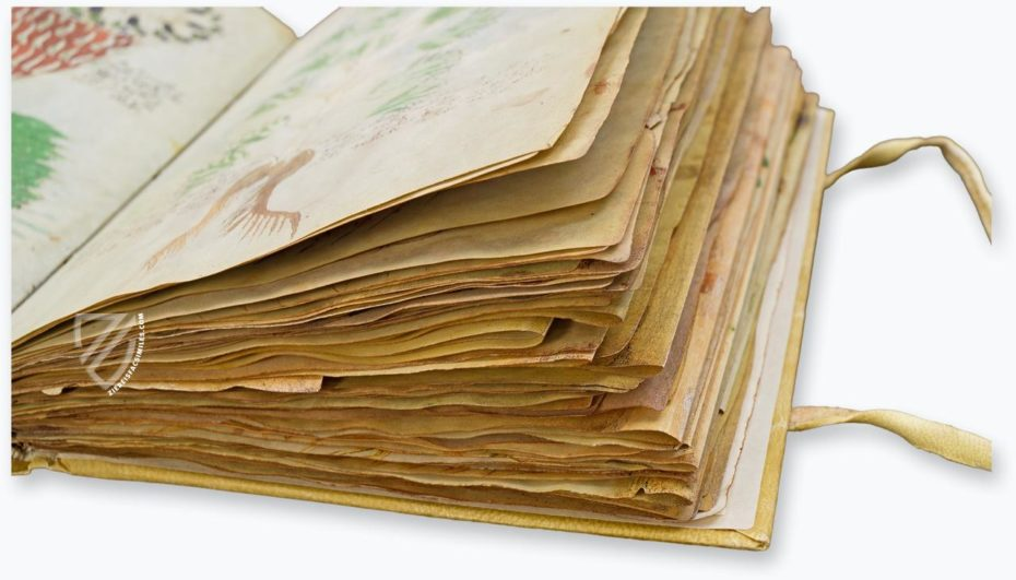voynich-manuscript-facsimile-7519f861f26f50-930x531.jpg