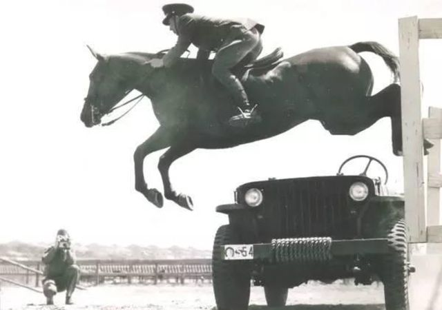 1930s-cavalry-training-11.jpg