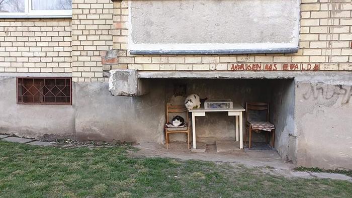 soviet-apartment-buildings-decor-design-lithuania-28-5f2aaf902b125__700.jpg