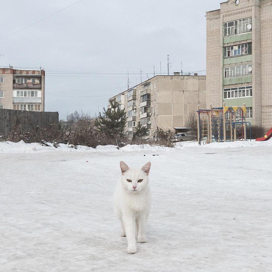 Дмитрий Марков  (14).jpg