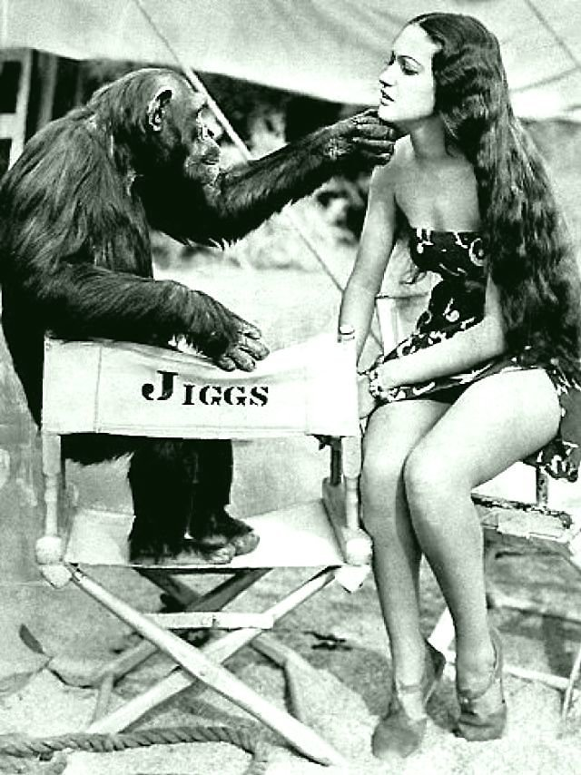 Актриса Дороти Ламур с шимпанзе Джиггзом (4).jpg