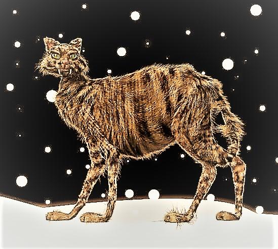 jolakotturinn-Christmas-Yule-Cat-MentalFloss.jpg