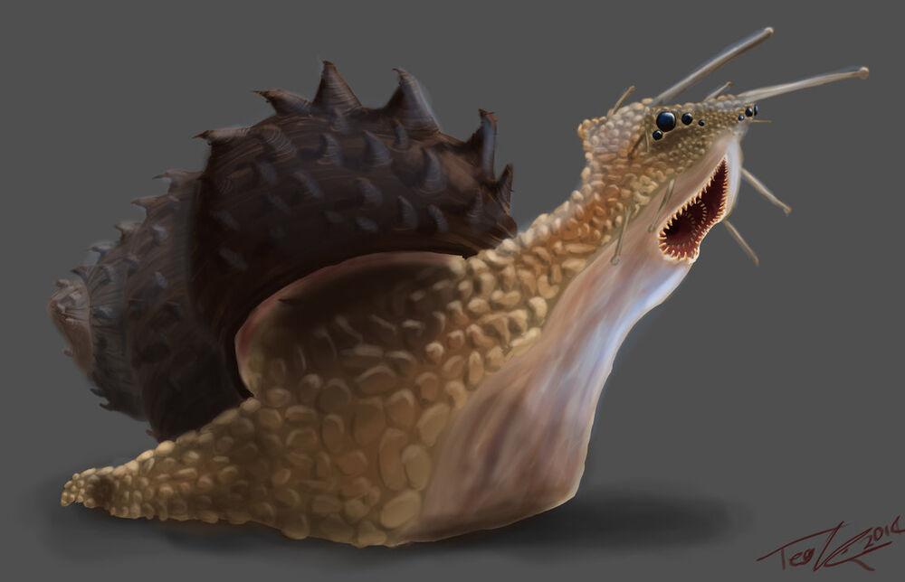 Snail_monster_by_teonardo-d86xa75.jpg