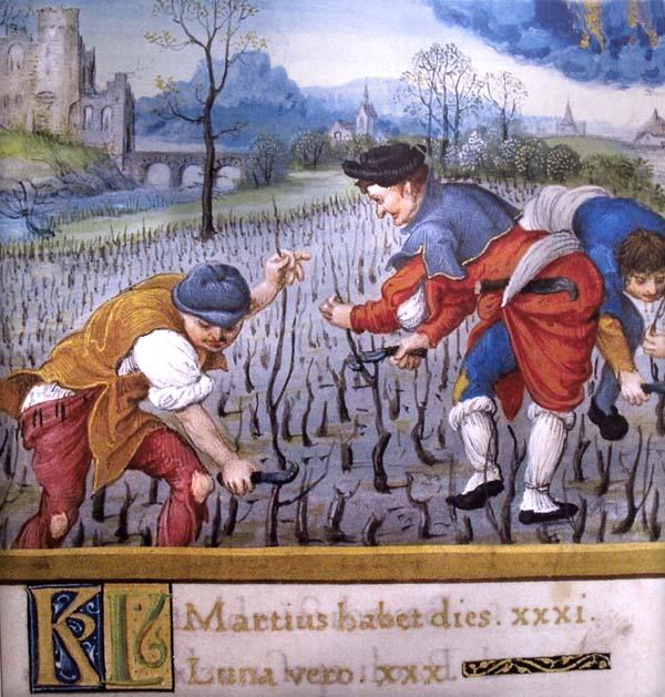 Что пили в средневековье (5).jpg