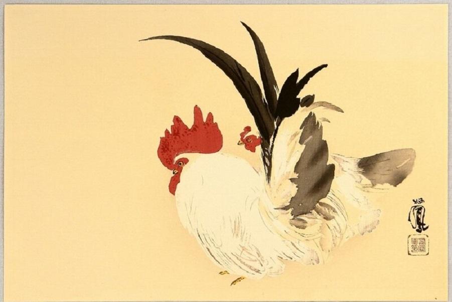 Петух и курица1.jpg
