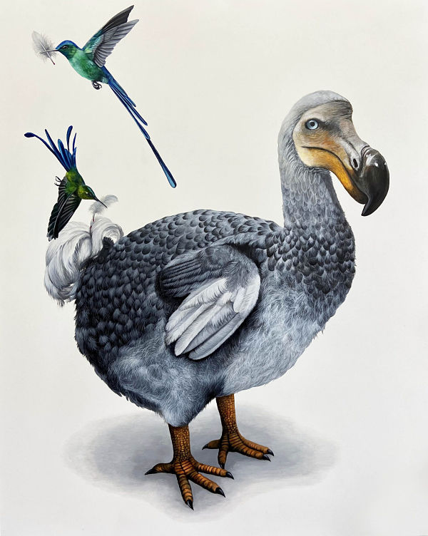 Louise-McNaught-bird.jpg
