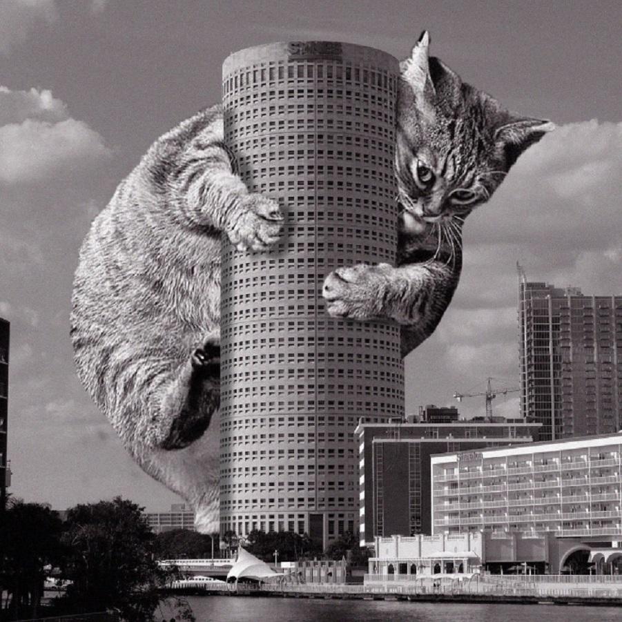 cats-of-brutalism6.jpg