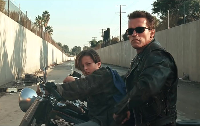 7-Terminator-60e6c7d741ebf__700.jpg