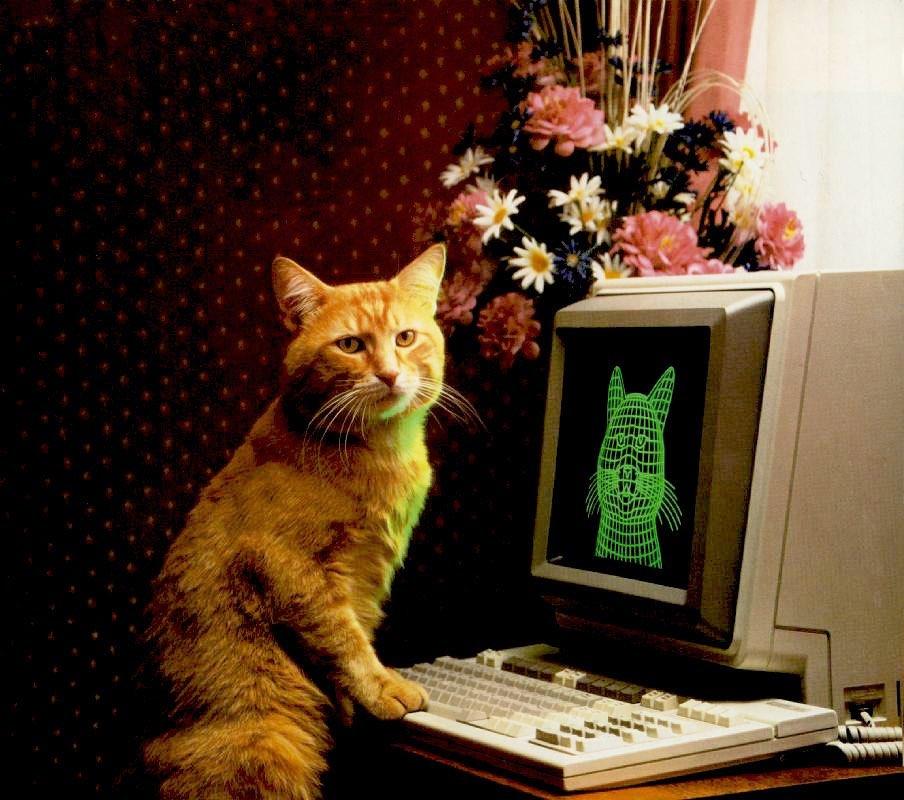 Смешные фотографии животных (4).jpg