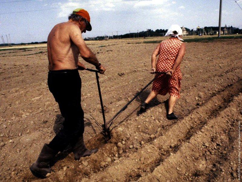 Два учителя на пенсии сажают картошку. Деревня под Псковом, май 1993