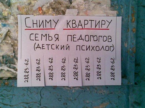 original.jpgсемья педагогов