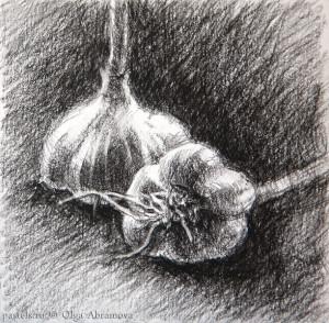 13x13conte_garlic