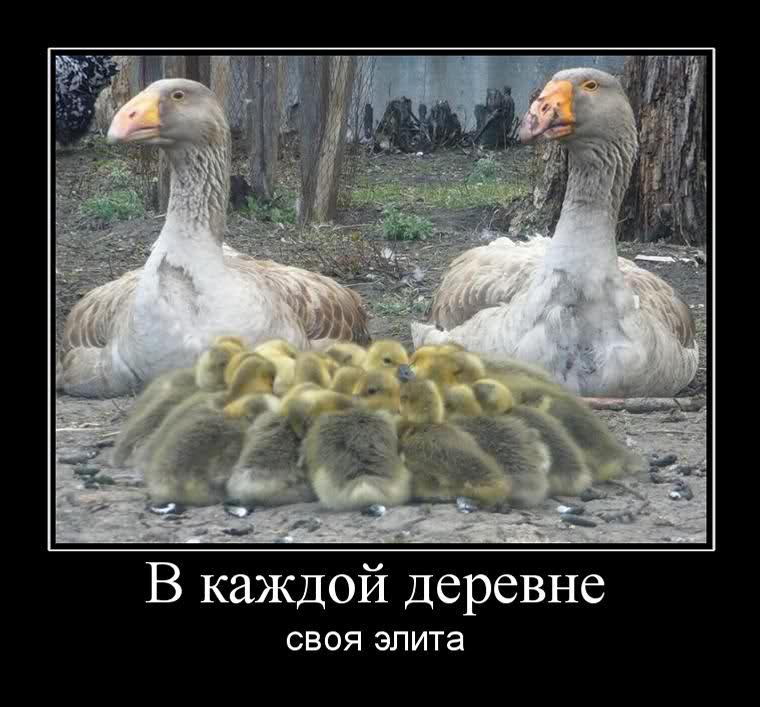 философия32jpg