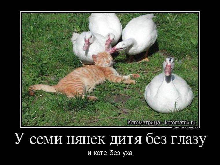 http://ic.pics.livejournal.com/tapkali/53470677/887652/887652_900.jpg