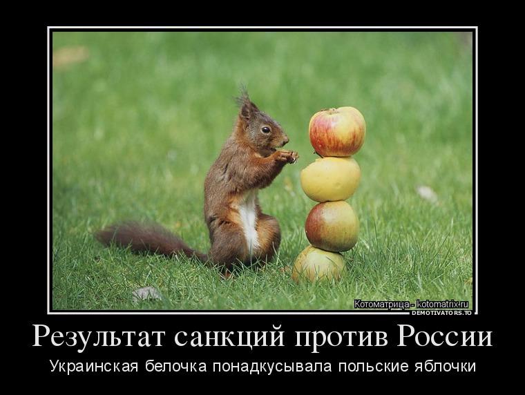 http://ic.pics.livejournal.com/tapkali/53470677/888596/888596_900.jpg