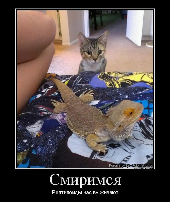 http://ic.pics.livejournal.com/tapkali/53470677/891444/891444_900.jpg