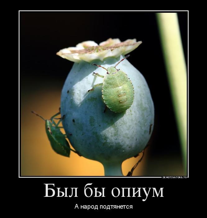 http://ic.pics.livejournal.com/tapkali/53470677/892092/892092_900.jpg