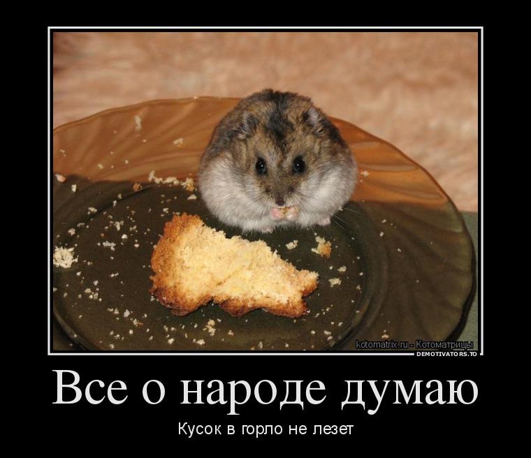 http://ic.pics.livejournal.com/tapkali/53470677/892963/892963_900.jpg