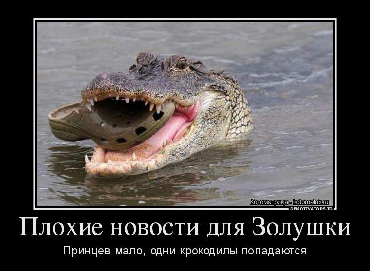 http://ic.pics.livejournal.com/tapkali/53470677/894114/894114_900.jpg