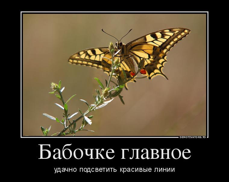 http://ic.pics.livejournal.com/tapkali/53470677/894409/894409_900.jpg