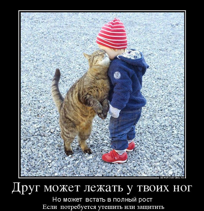 http://ic.pics.livejournal.com/tapkali/53470677/897965/897965_900.jpg