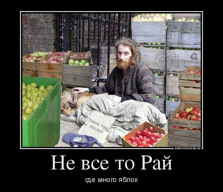 http://ic.pics.livejournal.com/tapkali/53470677/898640/898640_900.jpg