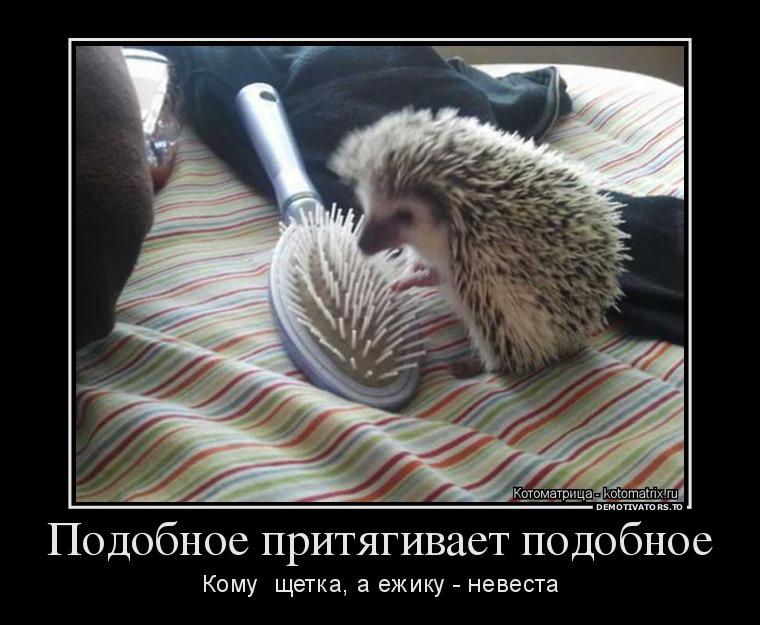 http://ic.pics.livejournal.com/tapkali/53470677/900155/900155_900.jpg