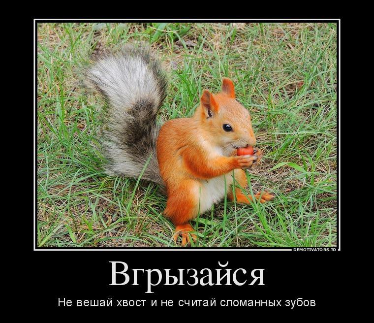 http://ic.pics.livejournal.com/tapkali/53470677/900836/900836_900.jpg