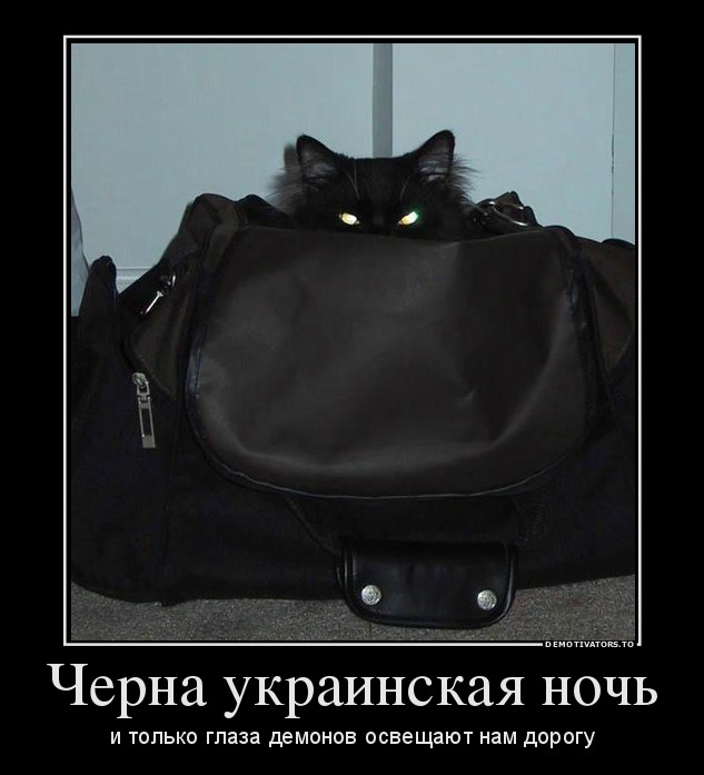 http://ic.pics.livejournal.com/tapkali/53470677/900943/900943_900.jpg