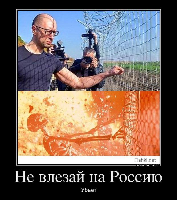 клумбы демотиваторы украина стена действительно, хризантема может