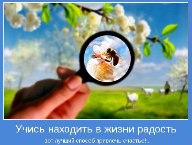 2013-05-20_105304