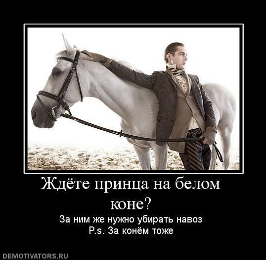 принц и конь