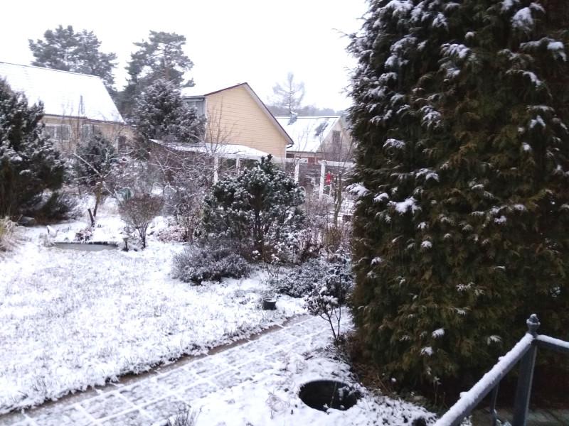 Сад сегодня