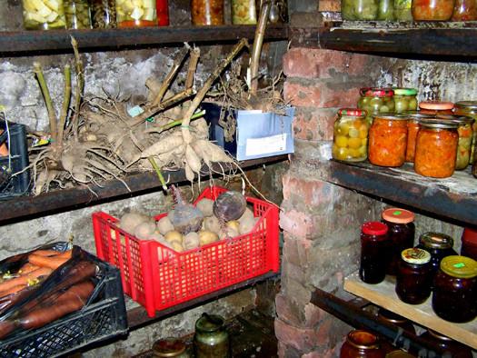 овощи, цветы и заготовки в погребе