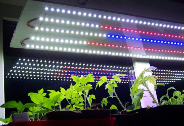 Своими руками подсветка растений светодиодная 5