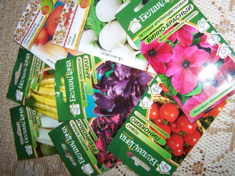 купить семена дача