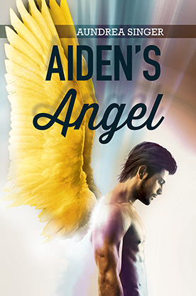 Aiden's_Angel_Final Small