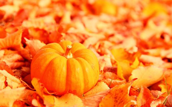 октябрь.jpg