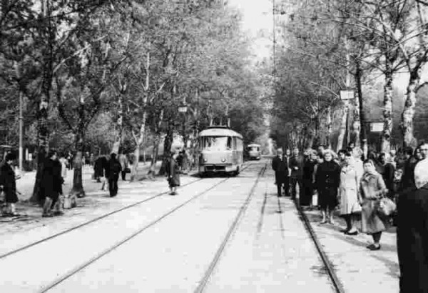 трамв78.jpg