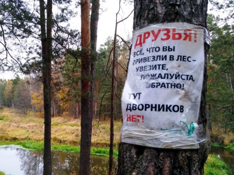 Посоветуйте, как сделать так, чтобы люди не оставляли мусор в лесу